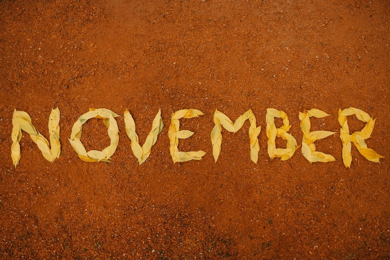 November monthly update